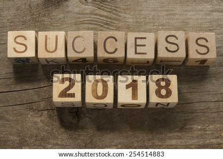 success 2018 on a wooden background - stock photo