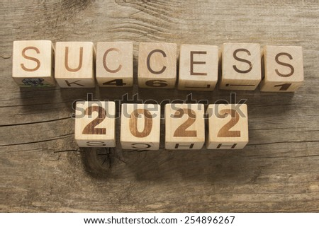 success 2022 on a wooden background - stock photo