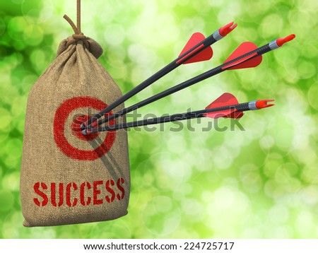 Success - Three Arrows Hit in Red Target on a Hanging Sack on Natural Bokeh Background. - stock photo