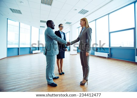 Successful business partners handshaking in office - stock photo