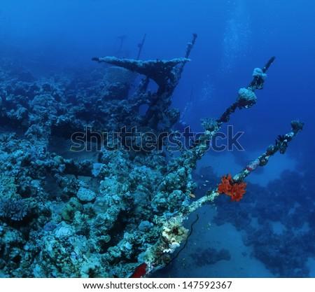 SUDAN, Red Sea, Sha'ab Swadi, U.W. photo, sunken ship wreck - stock photo