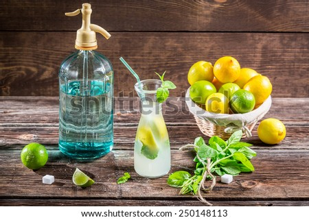 Sugar and citrus fruits for cold drink - stock photo