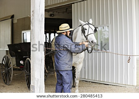 SUGARCREEK, OH - MAY 20, 2015:  An Amish man preparing his horse to pull an opened buggy. - stock photo