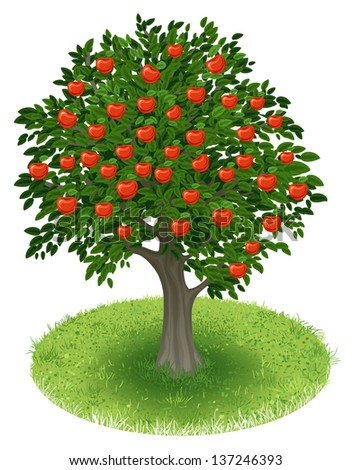 Summer Apple Tree with red apple fruits in green field, illustration - stock photo