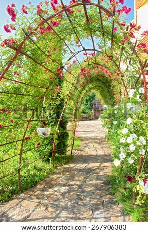 Summer arch covered by vine. Shot near Tyudiv, Carpathian Mountains, Ukraine.  - stock photo