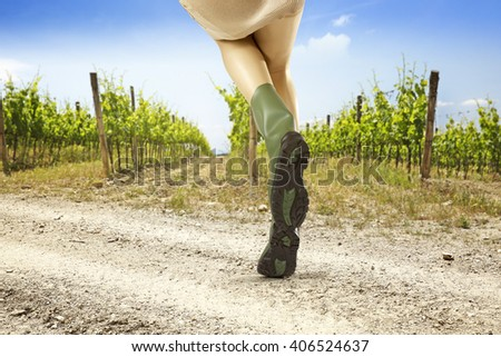 summer background of vineyard and shoes  - stock photo