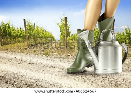summer background of vineyard and work on farm  - stock photo
