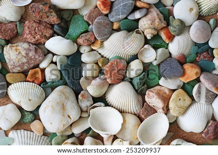 summer background: sea shells and beach stones - stock photo
