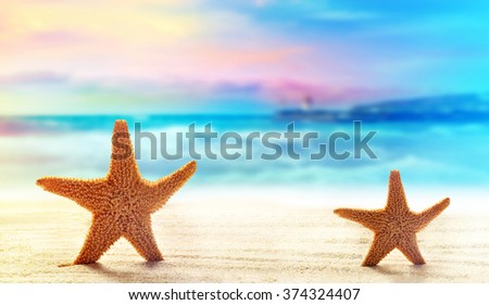 Summer beach. Starfish  on a sandy beach. The ocean, the beautiful sky and sunshine. - stock photo