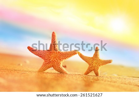 Summer beach. Two starfish on the seashore. - stock photo