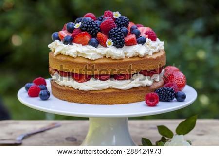 Summer berry cake - stock photo