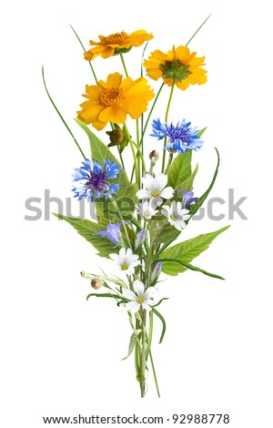 Summer bouquet isolated on white (without shadows) - stock photo