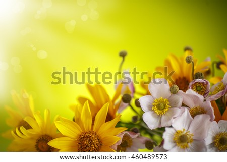 Summer bouquet of yellow daisies on an green background - stock photo