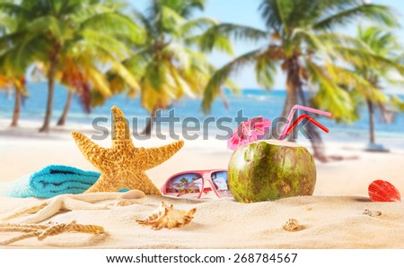 summer coconut drink on the beach. Summer paradise. - stock photo