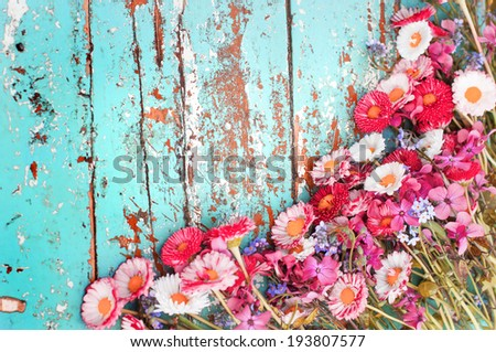 Summer colorful flowers on vintage wooden background - stock photo