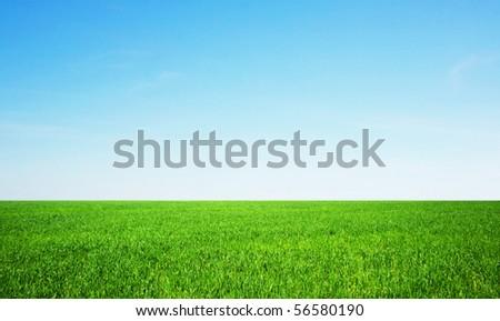 summer day - stock photo