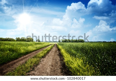 Summer day on the meadow, rural landscape - stock photo