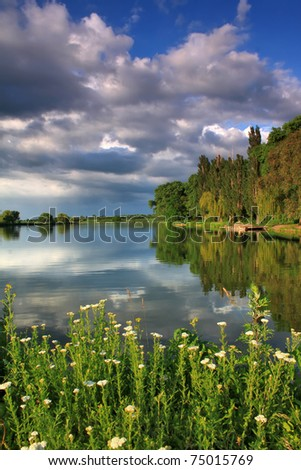 Summer evening on the shore of forest lake - stock photo