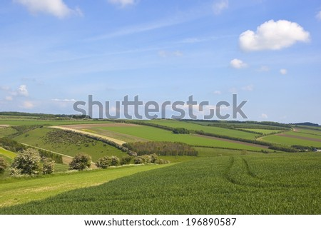 summer farmland landscape with patchwork fields and hedgerows  - stock photo