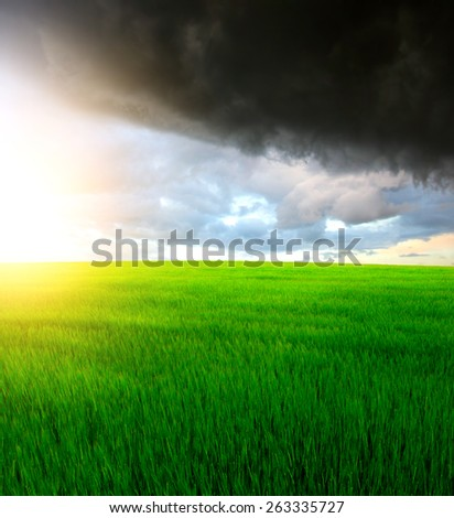 summer field landscape with dramatic sky - stock photo