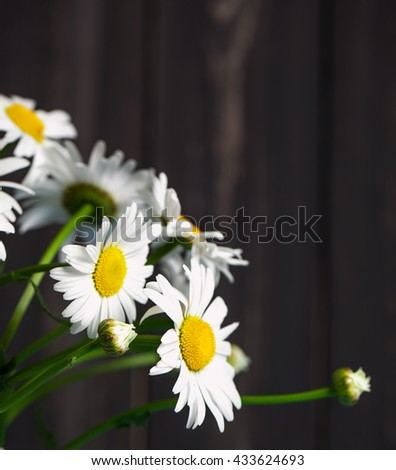 Summer Floral card with chamomile flower over blue vintage painted wooden background. - stock photo