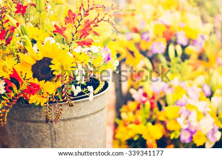 Summer flowers at the local farmer's  market. - stock photo