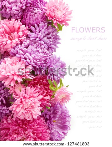 Summer flowers background isolated on white with sample text - stock photo