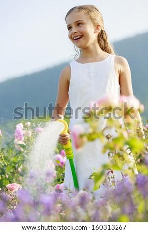 Summer garden, watering - beautiful  girl watering roses with garden hose in the garden - stock photo