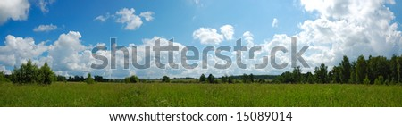 summer green fields and blue sky panorama - stock photo