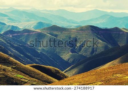 Summer green hills - stock photo