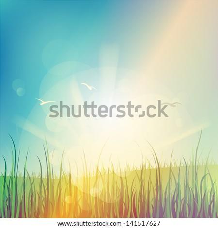 Summer holiday, beautiful background - stock photo