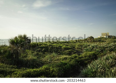 Summer in Satellite Beach in Florida. - stock photo