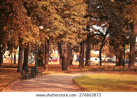 Summer in the park trees alley - stock photo