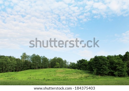 Summer landscape, a hill in a forest and blue sky - stock photo