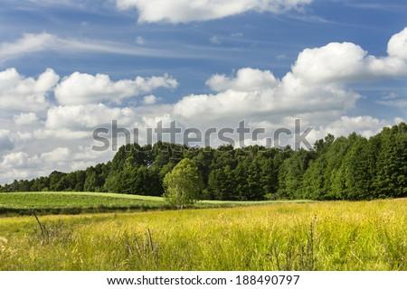 Summer landscape in north Poland. Pomerania district/Summer landscape - stock photo