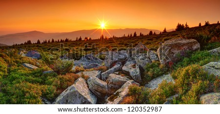 Summer landscape in the mountains. Sunrise - stock photo