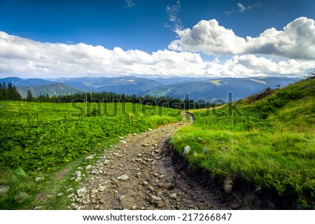 summer landscape. mountain path with forest on the blue sky background. Panorama - stock photo