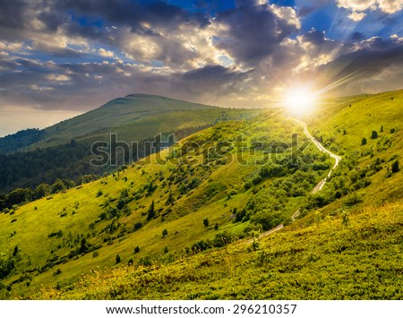 summer landscape. road through pine forest on hillside meadow to the mountain peak in evening light - stock photo