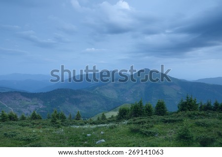Summer landscape. Twilight in the mountains. Spruce forest on the hillside - stock photo