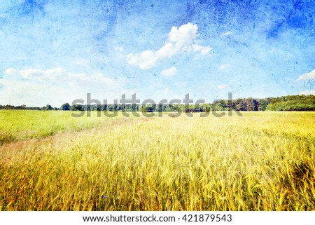 Summer landscape with road and rye fields- vintage style - stock photo