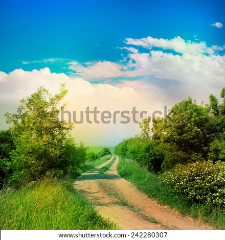 Summer landscape with road. Vintage style. - stock photo