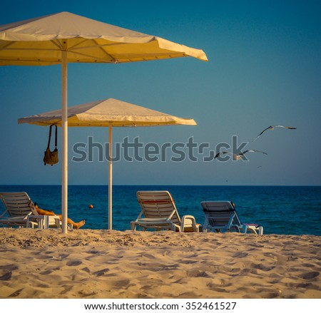 Summer landscape with seagulls and beach accessories. Coast with beach umbrellas, sun loungers - typical beach leisure for lazy tourist. Sandy beach near the blue sea with sun beds and umbrellas.  - stock photo