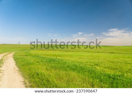 Summer Lawn Fields of Sunlight  - stock photo