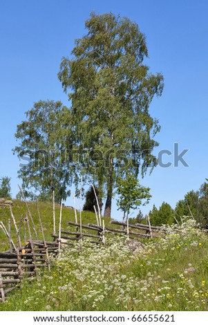 Summer meadow with flowers and a wooden fence in the countryside - stock photo
