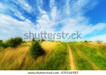 Summer meadows rural landscape. Poland countryside. - stock photo