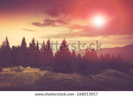 Summer mountain landscape. Fantastic evening glowing by sunlight.  Filtered image:cross processed vintage effect. - stock photo