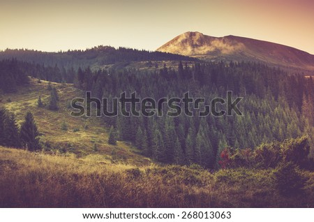 Summer mountain landscape. Filtered image:cross processed vintage effect. - stock photo