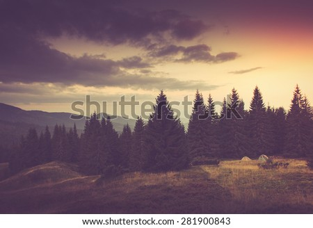 Summer mountain landscape. Tourist tents near forest.  Filtered image:cross processed vintage effect. - stock photo