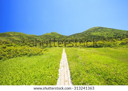 Summer of Mt.Hakkodasan, Aomori Prefecture, Japan - stock photo