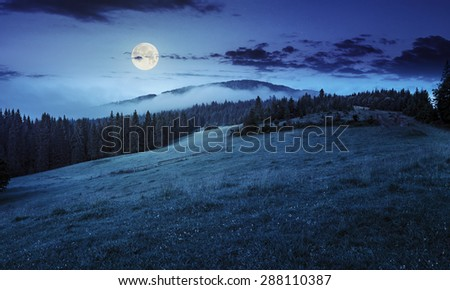 summer panoramic landscape. fog from conifer forest surrounds the mountain top at night in full moon light - stock photo